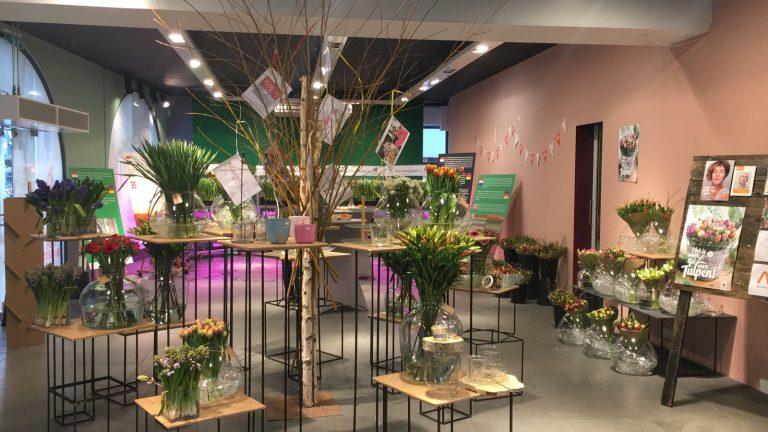 Clusius studenten halen 3000 euro op met Pop-up Tulpen Experience